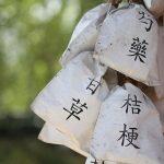 chronische sinusitis traditionelle chinesische medizin
